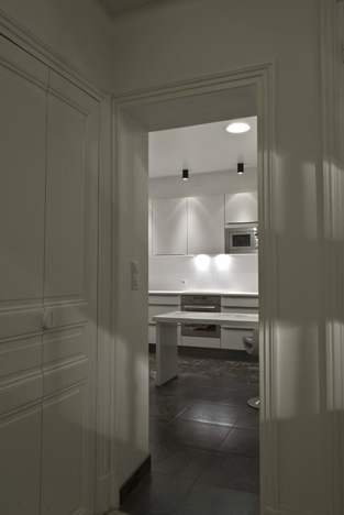 Amenagement paris appartement haussmanien - Amenagement cheminee condamnee ...